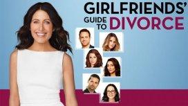 image de la recommandation Girlfriends' Guide To Divorce