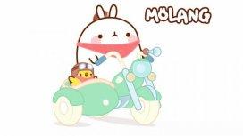 image du programme Molang