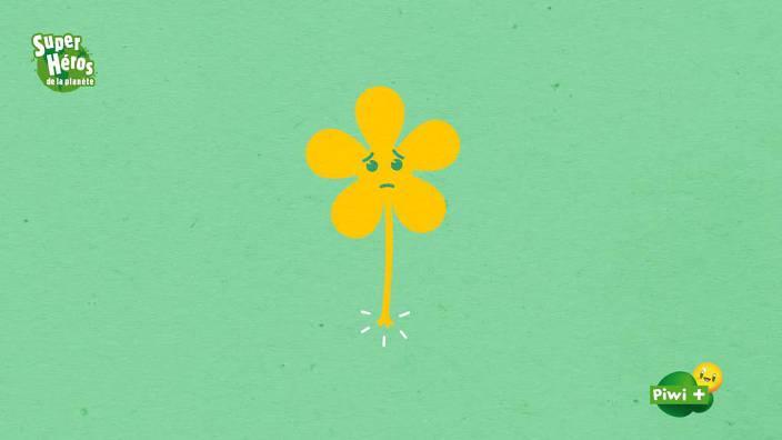005. Astuces de zac - fleurs