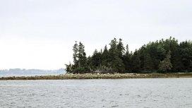 image du programme Le mystère d'Oak Island