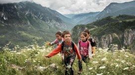 image du programme Les chemins de l'école