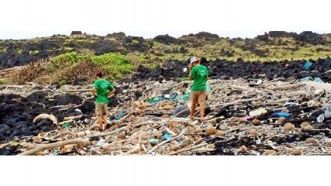Plastique : risques et en