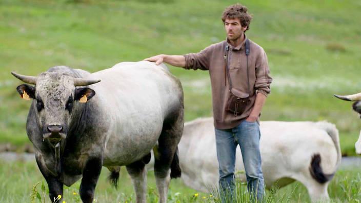 GEO Reportage - Brice, un vacher à l'assaut des