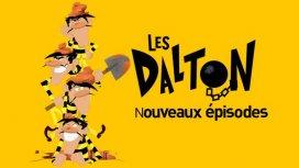 image du programme Les Dalton S 03
