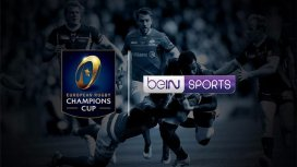 image du programme Rugby Champions Cup