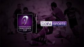 image du programme Rugby Challenge Cup