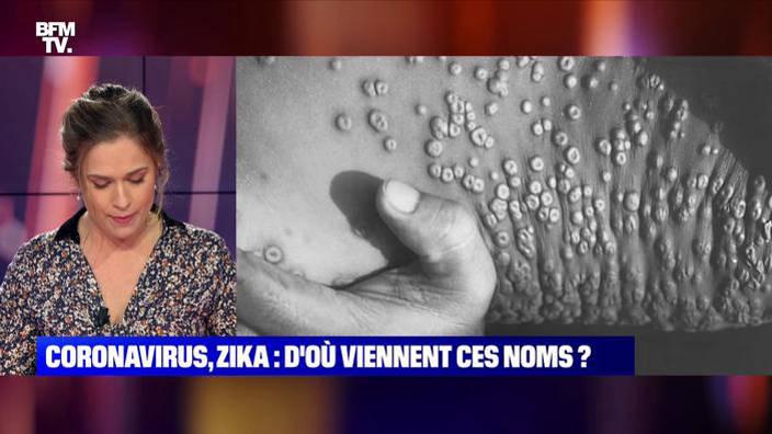 Coronavirus, Zika... D'où viennent les noms