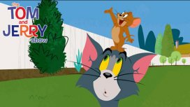 image du programme Tom & Jerry Show
