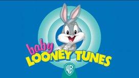 image du programme Baby Looney Tunes
