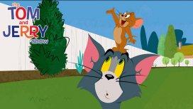 image du programme Tom & Jerry Show - Saison 2