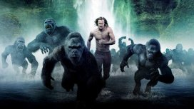 image du programme Tarzan
