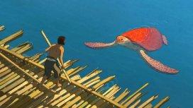 image du programme La tortue rouge