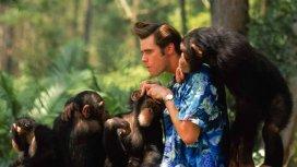 image de la recommandation Ace Ventura en Afrique
