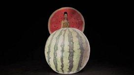 image du programme Lady Frutti