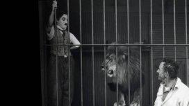 image du programme Le cirque