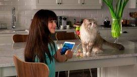 image du programme Ma vie de chat