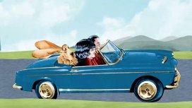 image du programme Les animaux domestiques Le chien