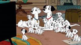 image du programme Les 101 Dalmatiens