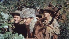 image de la recommandation Davy Crockett, roi des trappeurs