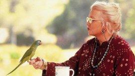 image du programme Paulie, le perroquet qui parlait trop