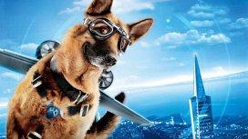 image du programme Comme chiens et chats : la revanche de Kitty...