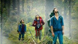 image du programme Dans la forêt