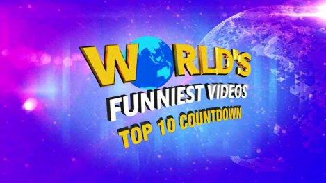 Les vidéos les plus drôles du monde