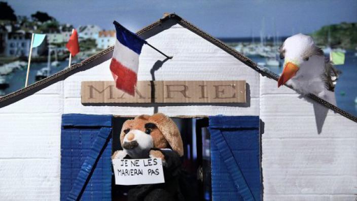 Image du programme La sociologue et l'ourson