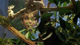 image du programme Le python