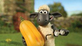 image de la recommandation Shaun le mouton
