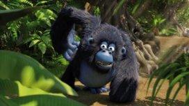 image du programme Les as de la jungle à la rescousse