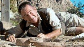 image du programme Les 10 serpents les plus dangereux
