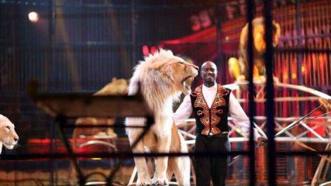 39e Festival international du cirque ...