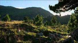 image du programme A la découverte des Alpes autrichiennes