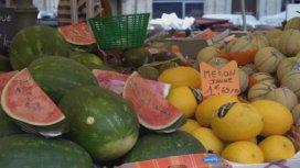 image du programme Melon, pastèque, duel au soleil