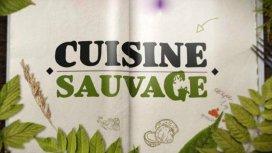 image du programme Cuisine sauvage