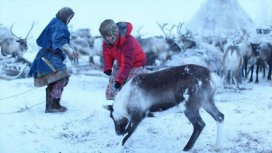 image du programme Peuples nomades