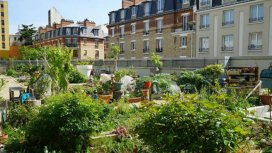 image du programme Toits de Paris, des jardins extraordi...