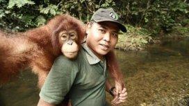 image du programme A l'école de la vie sauvage