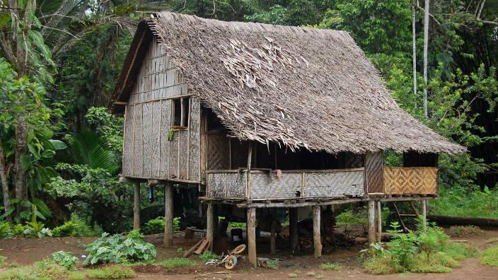 La région Papouasie