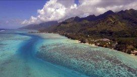 image du programme Une saison à Tahiti
