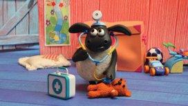 image du programme Voici Timmy