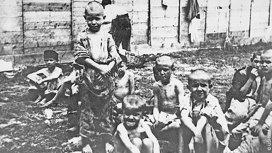 image de la recommandation Les collaborateurs des nazis