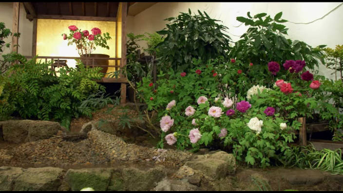 Le Jardin Yuushien