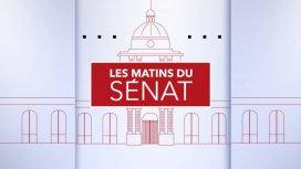 image de la recommandation Les matins du Sénat