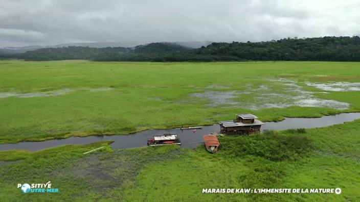 Marais de Kaw : l'immensité de la nature