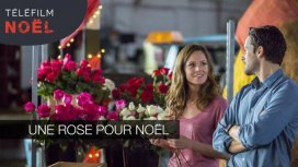 image du programme Une rose pour Noël