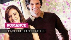 image du programme D'amour et d'orchidée