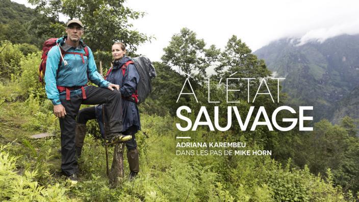Image du programme À l'état sauvage