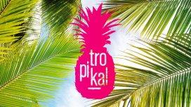 image du programme TROPIKAL